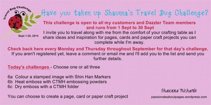 Travel Bug Challenge 6