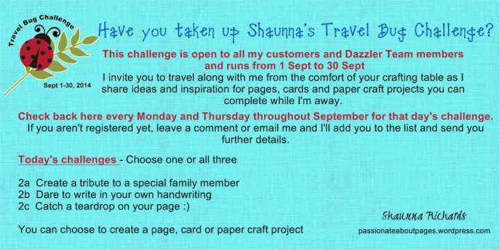 Travel Bug Challenge 2