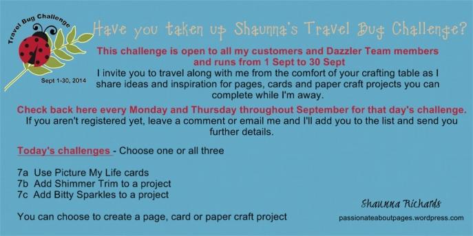 Travel Bug Challenge 7