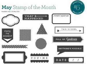 Close To My Heart's Stamp of the Month, Just Sayin',  is only available in May 2015