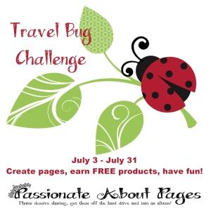 Travel Bug Challenge 2015
