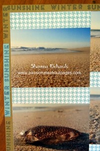 "'Winter Sunshine"" was repeatedly stamped around all 4 edges of the Desert Sand cardstock to create a border. One title on Glacier helps it stand out."