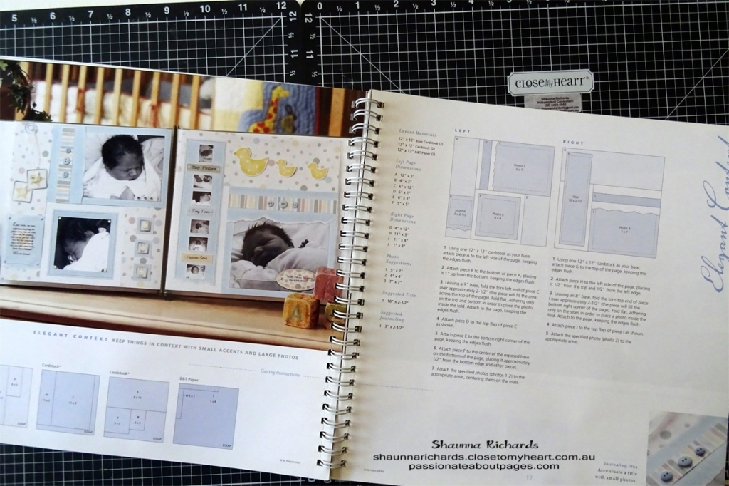 Close To My Heart ideas books provide inspiration, cutting and design guides to help you create fabulous scrapbook layouts. View the collection of ideas books at www.shaunnarichards.closetomyheart.com.au