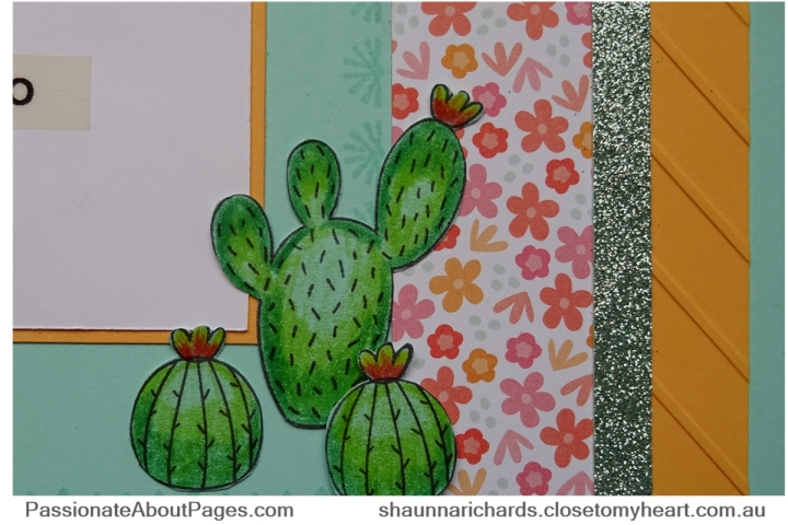 Prickly Pear Details - Page 001