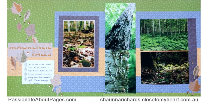 The soft colours and delicate patterns from CTMH Falling For You collection paired with the Cardmaking Stamps and Thin Cuts made the perfect accompanianment for these forest photos. Purchase supplies at shaunnarichards.ctmh.com.au